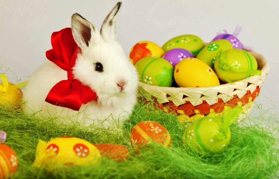 Easter offer .